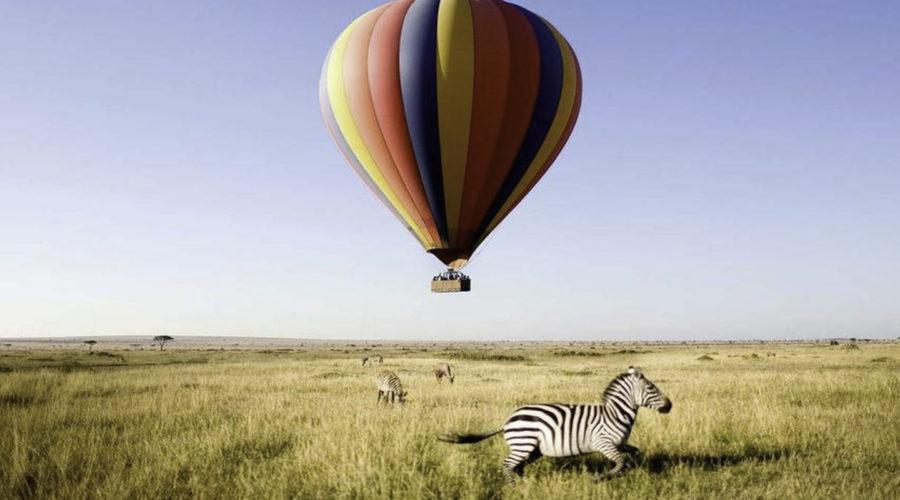 &Beyond safari011