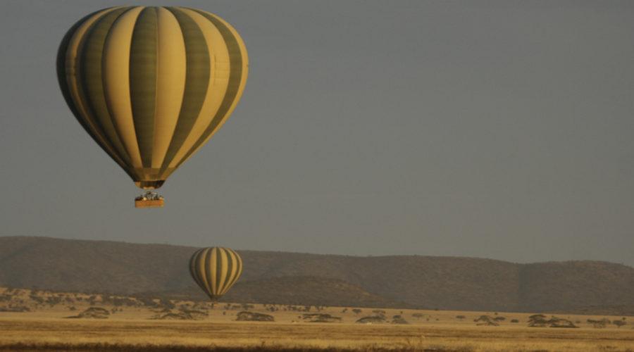 baloon safari01