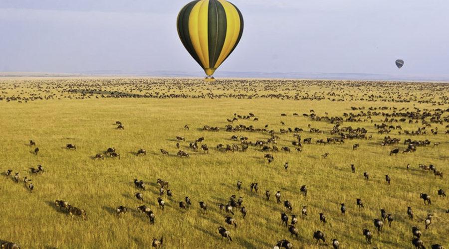 baloon safari05