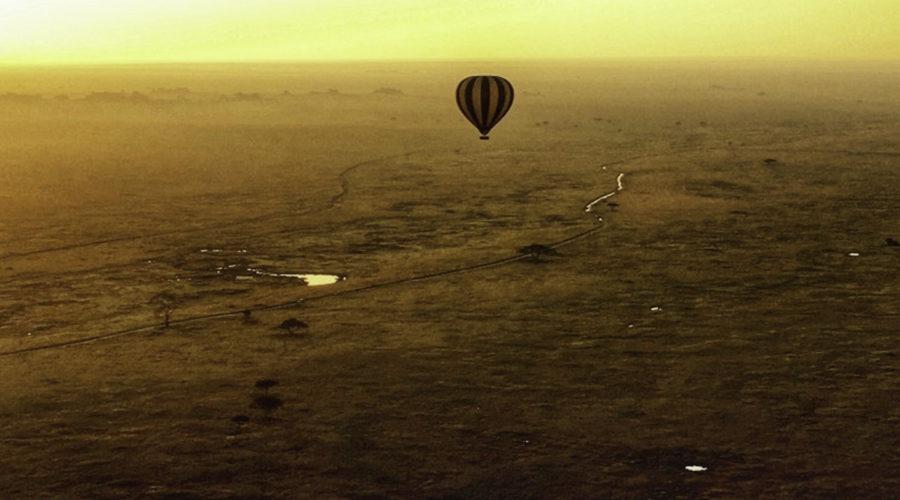 baloon safari08