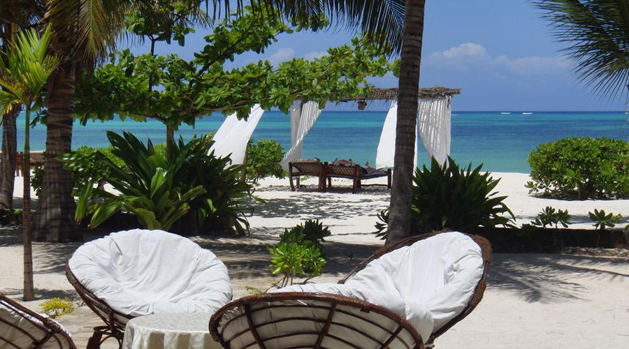 Next Paradise 07