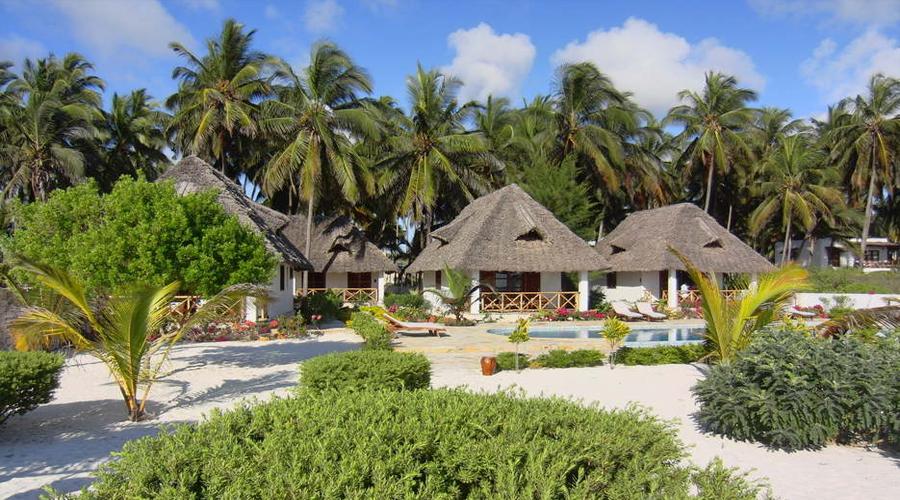 Next Paradise 08