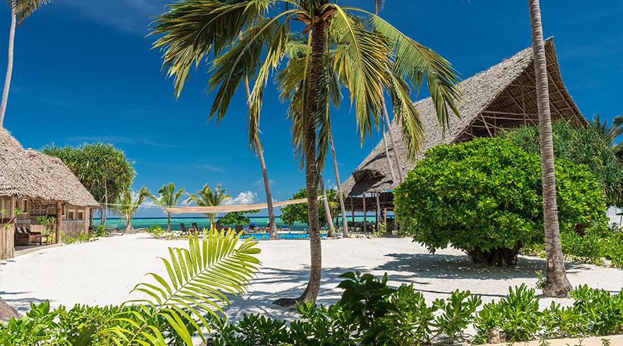 Zanzibar Magic 33